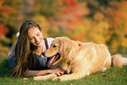 mammary_tumors_in_dogs_-_malignant-3