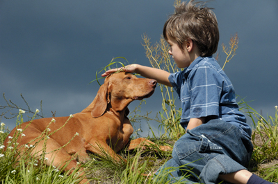 young boy petting brown dog while laying in grass